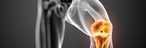 Máster en Fisioterapia Invasiva